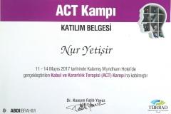 Kabul ve Kararlılık Terapisi (ACT) Kampı